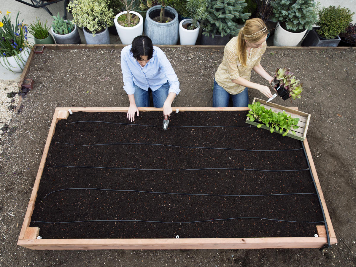 Charmant The Perfect Raised Bed