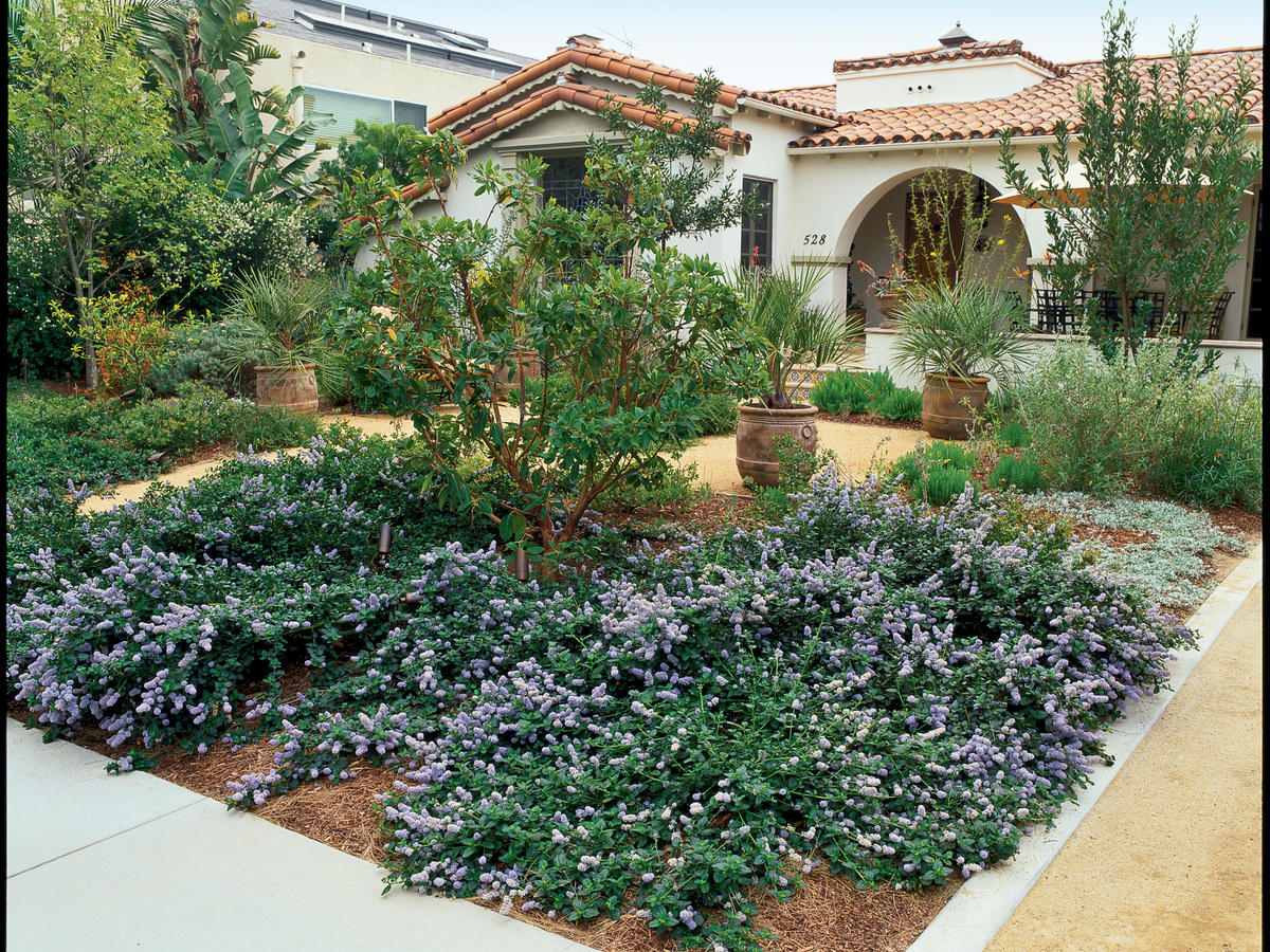 Waterwise Front Yard Landscaping Garden Inspiration