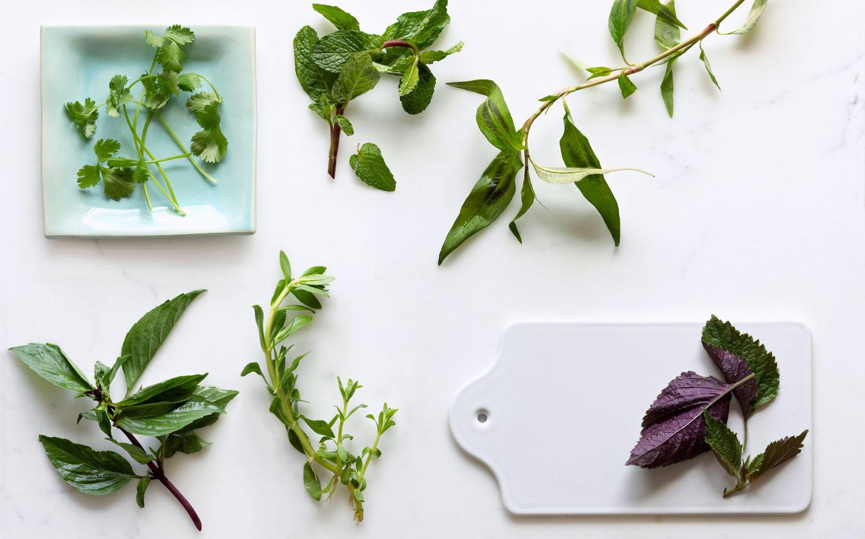 how to grow & cook with rau ram (vietnamese coriander