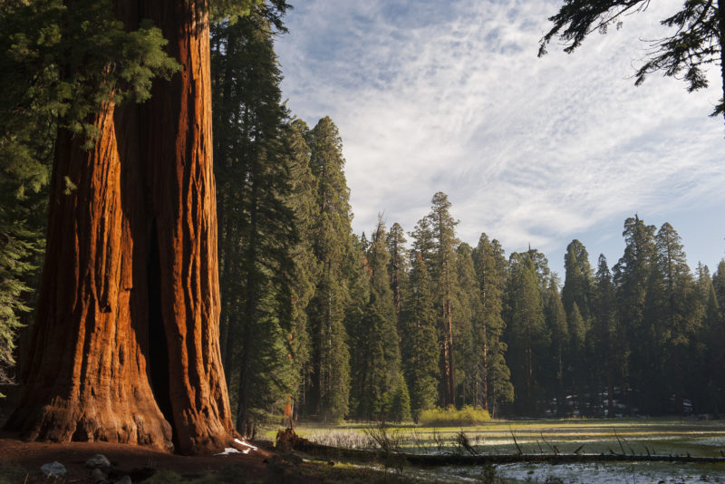 5 California Escapes to Enjoy a Socially-Distanced Fourth of July