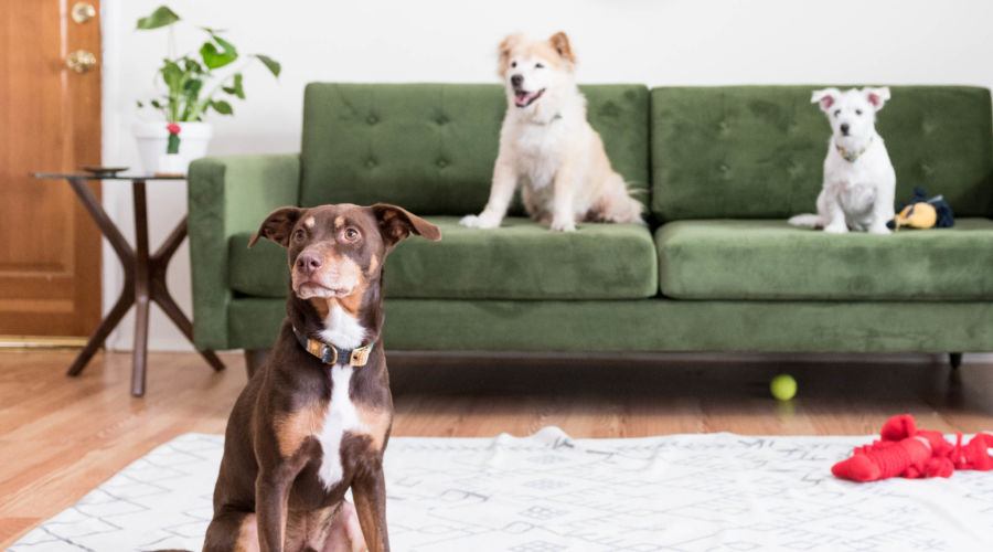 Find the Right Upholstery Fabric