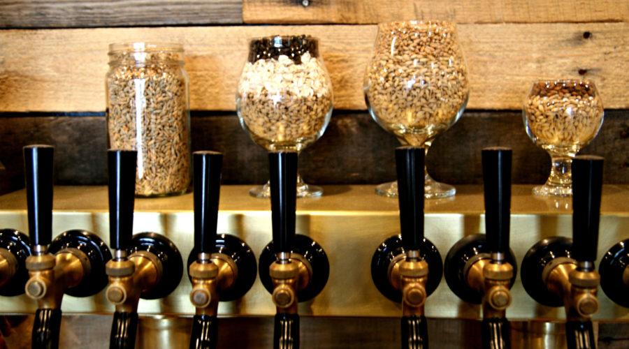 Craft Beer Crawl in Colorado