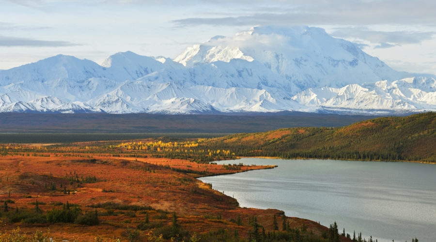 A Wilderness Cruise through Alaska