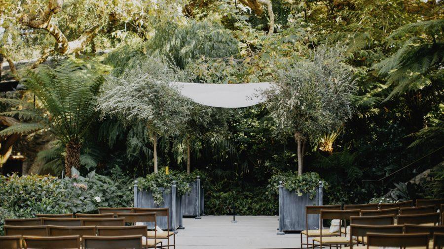 Affordable Wedding Setup