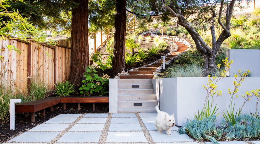 Landscaping and Drainage
