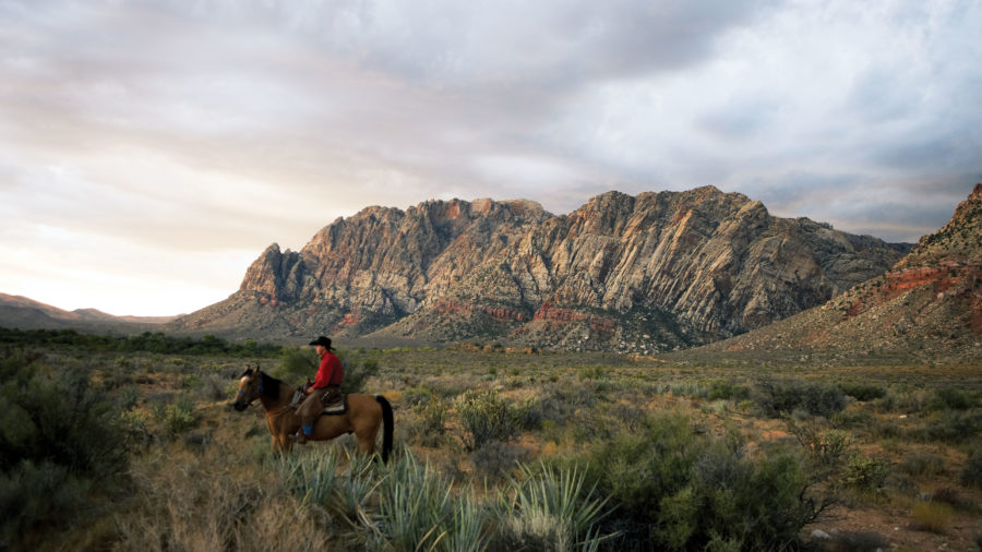 Best Outdoorsy Fun: Cowboy Trail Rides