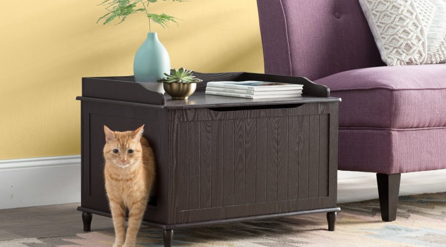 Archie & Oscar Pet Furniture Line on Wayfair