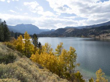 June Lake Loop Fall Color